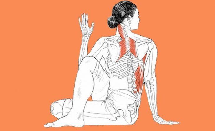 Картинки по запросу біль у спині