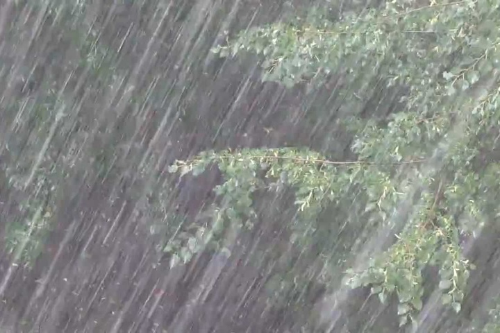 Дощі продовжаться. Синоптик зробила заяву про погоду в Україні. Коли чекати потепління
