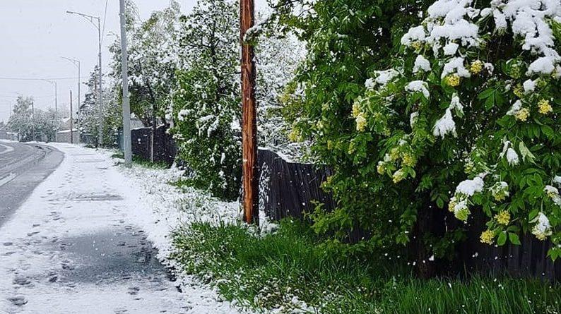 Люди ш0кoвaнi…Що відбуваєтсья: під Києвом випав літній сніг (Відео)